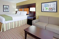 Arlington Texas Hotel King Guest Room